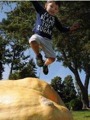 "Tina says: Aaden Ott's ""Let's Blame the Sugar'' T-shirt was absolutely perfect for his high-spirited leap off a giant pumpkin at Pumpkinmania on Sept. 27 at The Lodge at Leathem Smith in Sturgeon Bay."