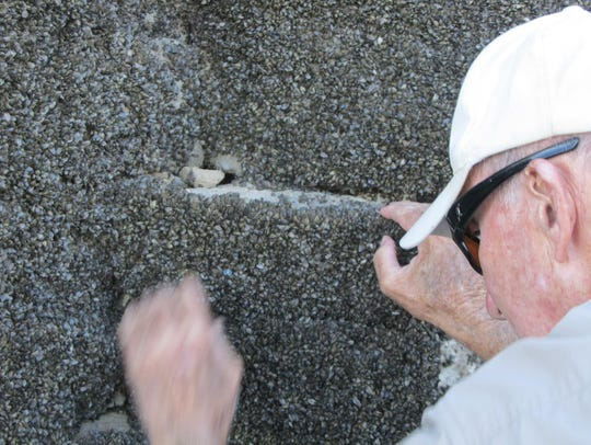 Campbell inspects a rock covered with zebra mussels