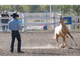Compadres Therapy Inc. hosted The Hands of Cantu: Horsemanship