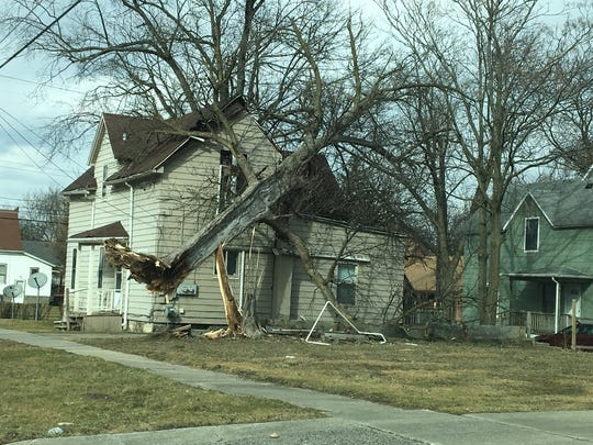 Trees were uprooted and fell on houses March 8, 2017 across Southeast Michigan as winds as high as 60 mph blew through the area.