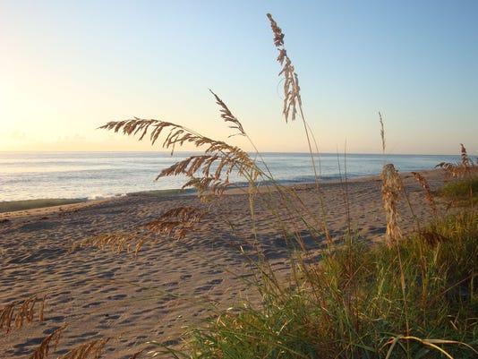 0712-YNMC-FOS-Beach-Sunrise.jpg