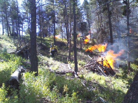 Prescribed burns are used by many agencies to reduce