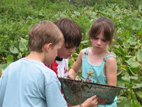Eco-Explorers exploring the habitat at the Environmental