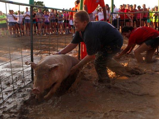 Hog Wrestling
