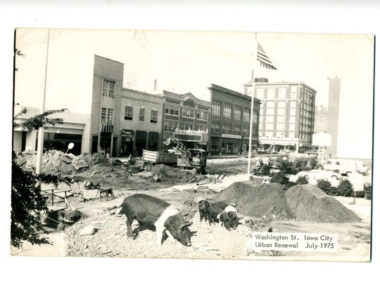 """The front of a postcard titled """"Urban Renewal"""" looking"""