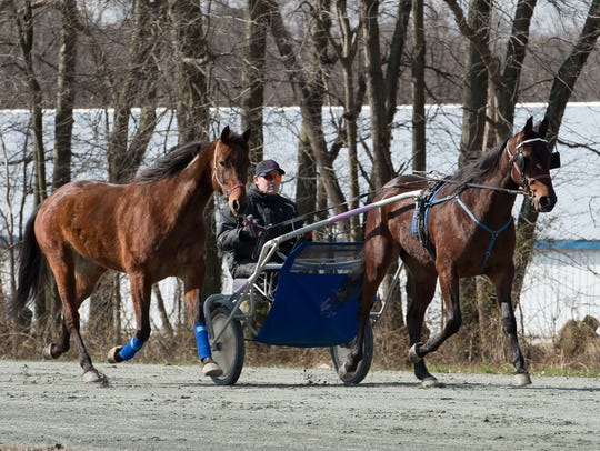 Steven Nason of Freedom, New Hampshire, on the practice track with Monkey and Geremel Hanover, both standardbred horses, at Track View Farm in Hartly.