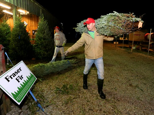 01-Christrmas tree farm.JPG
