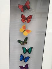 Butterflies created by Jennifer Ivory of Insectworks, on display at the Des Moines Arts Festival on Saturday.