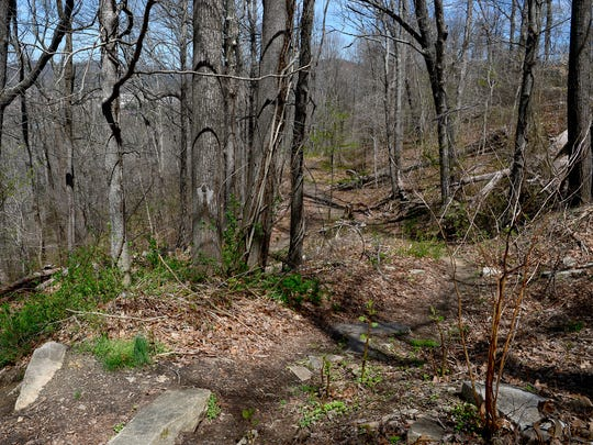 A makeshift trail leads from Memorial Stadium up Beaucatcher