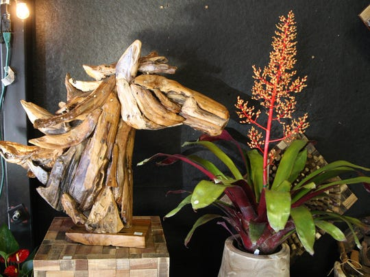 Horsehead made of driftwood from Tahiti at Oyster Bay Trading Company
