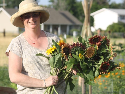 Gardener Maria Winslow gathers a  bouquet of sunflower for the residents at .JPG