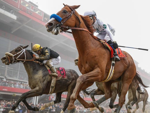 Preakness 2018 Post Position Draw Odds Full Field Entries