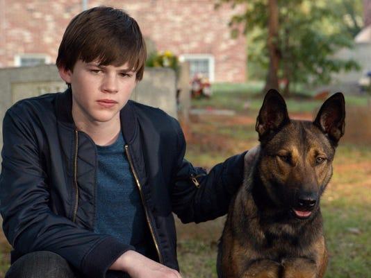 Film Review-Max