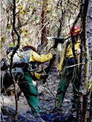 Firefighters work to contain the Dicks Creek Fire that