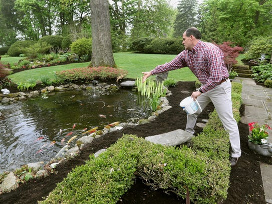Ike Neilson feeds fish in a backyard pond of his estate in Brighton.