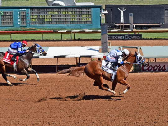 Apollitical Scout easily handled her rivals in the $100,000 Ruidoso Juvenile, a race for horses who did not qualify for the Ruidoso Futurity.