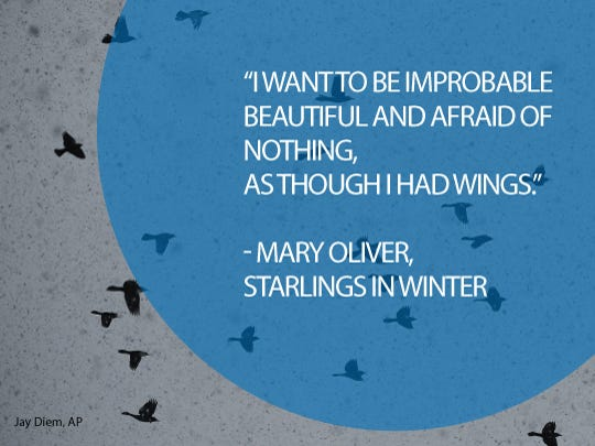 Mary Oliver (b. 1935) writes both prose and poetry about the natural world. She won the 1984 Pulitzer Prize in poetry for her fifth book, 'American Primitive.' Critics have compared her work to poets including Walt Whitman, Edna St. Vincent Millay and Elizabeth Bishop.