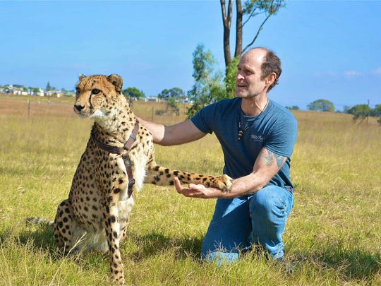 Art and Felix the Cat, a cheetah named after the famous cartoon. This photo was taken in Johannesburg, South Africa.