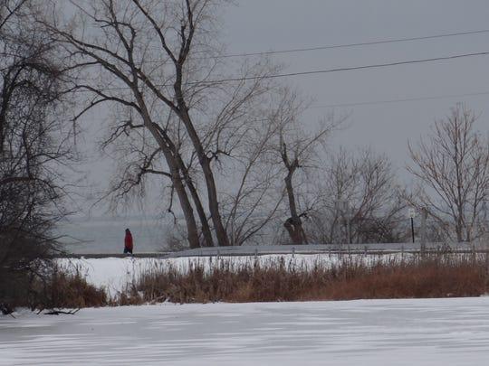 Durand Lake, foreground, where a toxic blue-green algae