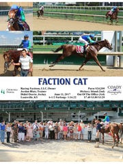 Racing Factions' first horse, Faction Cat, hasn't disappointed its shareholders.
