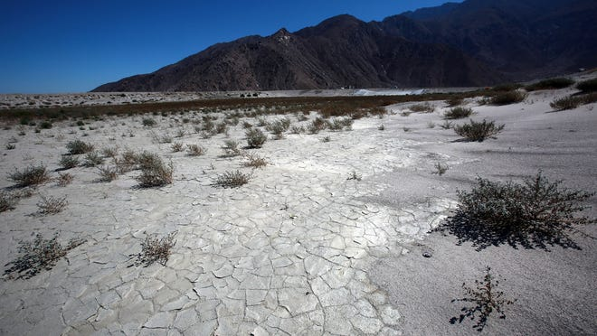 Cracks spread across the dry bed of percolation pond one, a sign of California's drought, as seen at the Whitewater Groundwater Replenishment Facility on Wednesday, August 6, 2014 near Palm Springs, Calif.