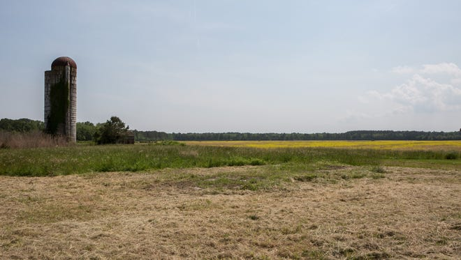 A view of a field west of Berlin, which may eventually become a solar farm on Friday, May 27, 2016.