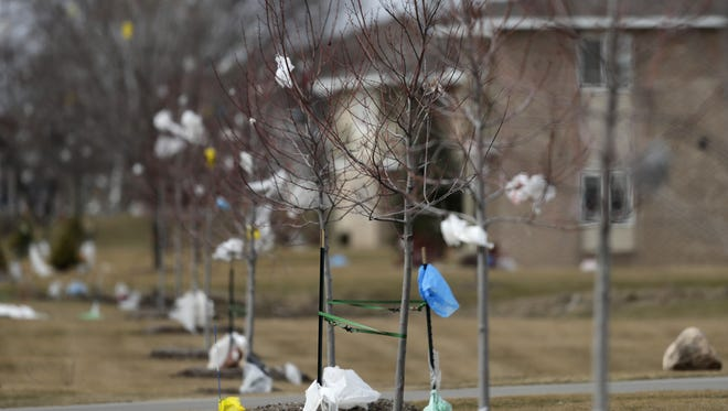 Plastic from the Outagamie County Recycling and Solid Waste facility litters Elm Drive on Thursday in Little Chute. High winds on Wednesday scattered debris from the landfill across the residential neighborhood east of Holland Road.