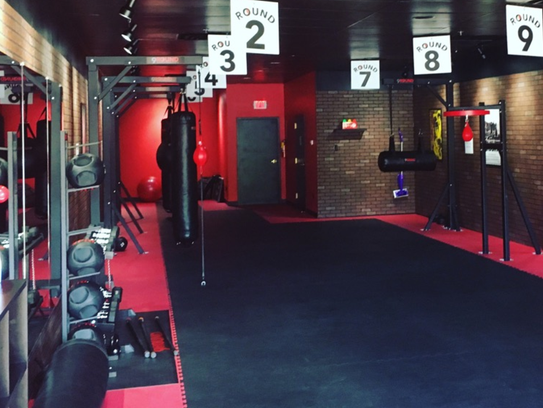 Punching bags that are the same kind professional boxers