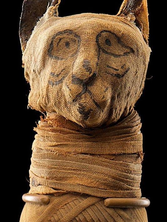 PR 19 - Egyptian Cat Mummy.tiff