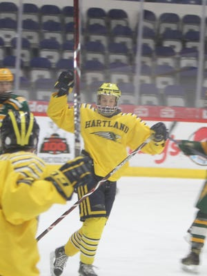 Joey Larson celebrates Hartland's second goal, just 2:59 into the game, in a 6-1 victory over Midland Dow in the state hockey quarterfinals on Tuesday, March 6, 2018.