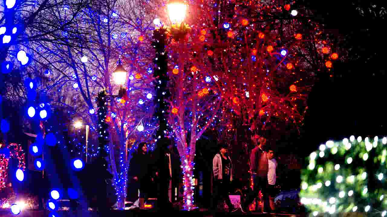 christmas lights illuminate founders park