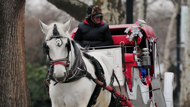 A horse-drawn carriage in New York's Central Park.