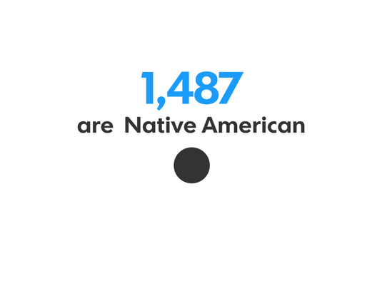 10_nativeamerican