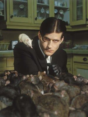 """Crispin Glover in the 2003 horror movie """"Willard"""""""
