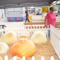 Sandusky County Fair highlights.