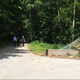 Woman, 86, was found dead in wooded area