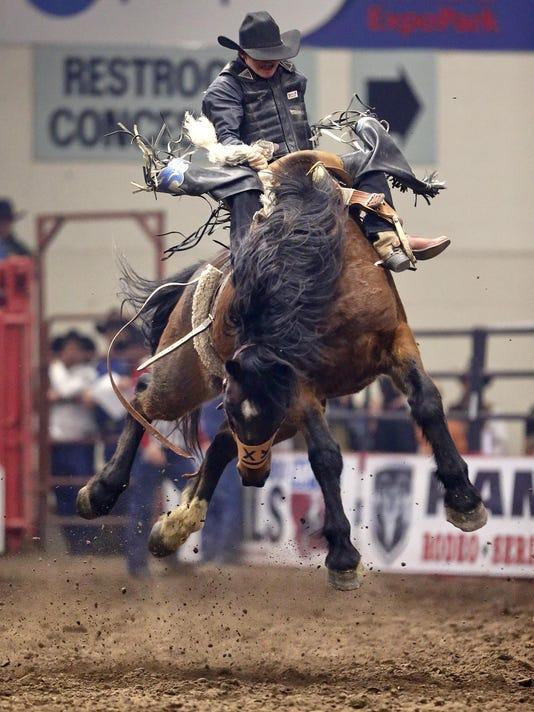 -rodeo 3.jpg_20150116.jpg