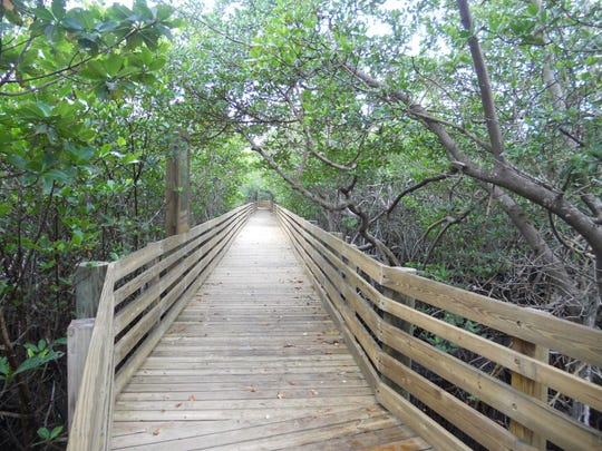 A boardwalk leads to the Indian River Lagoon at Peck Lake Park in southern Martin County.