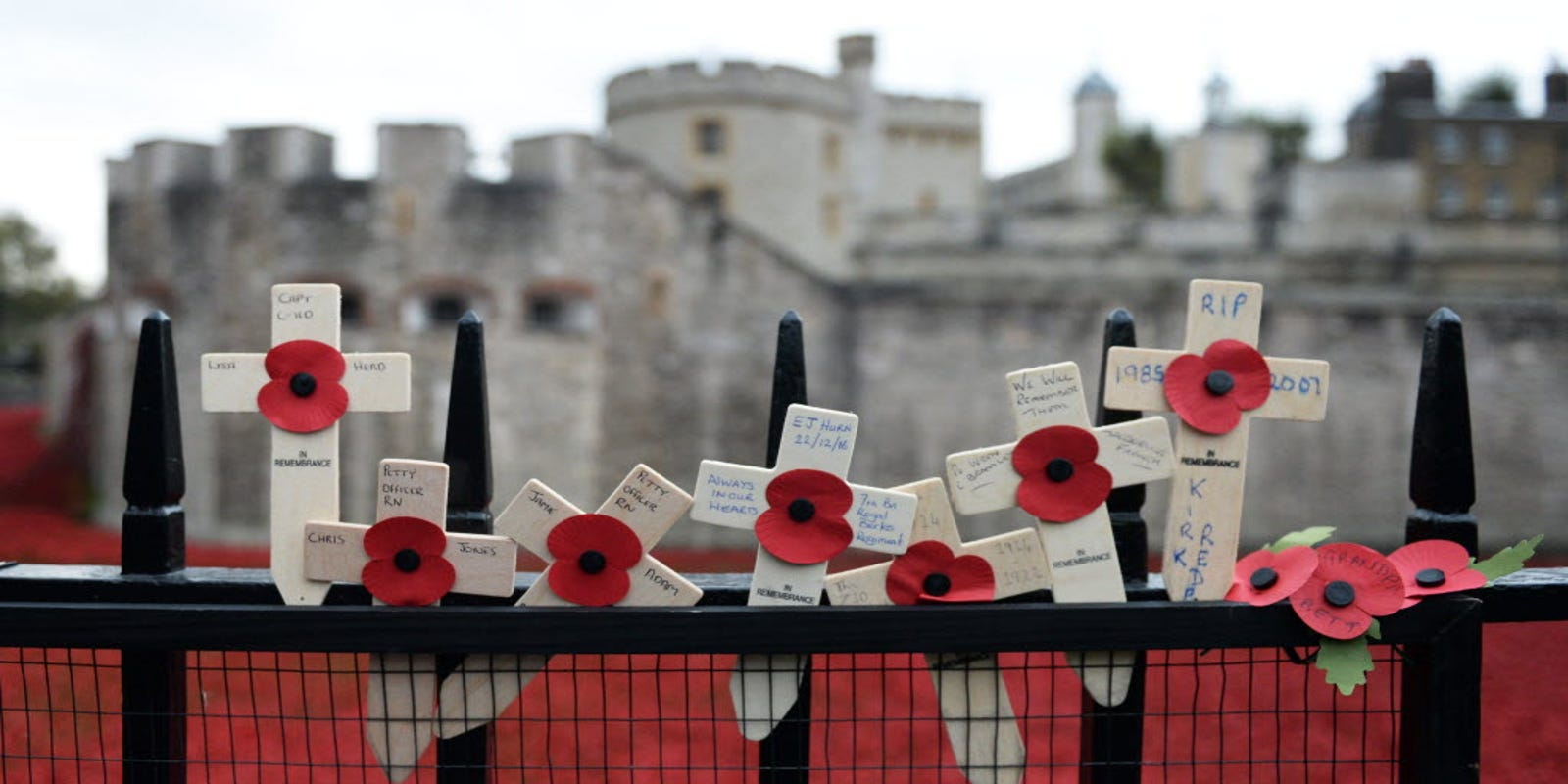 How The Poppy Became The Symbol Of Sacrifice