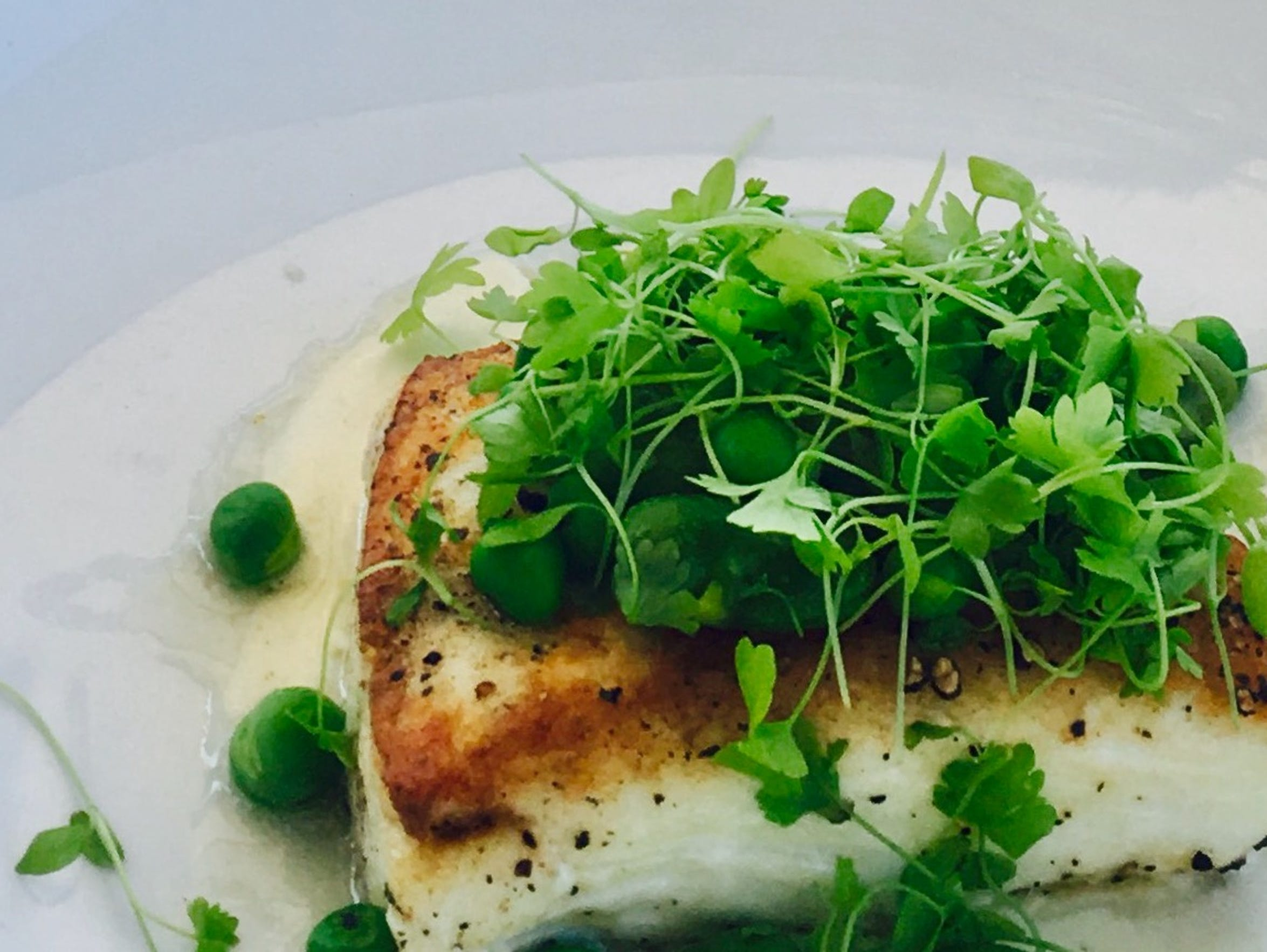 Seared halibut, minted fava beans, pea ragout and vanilla