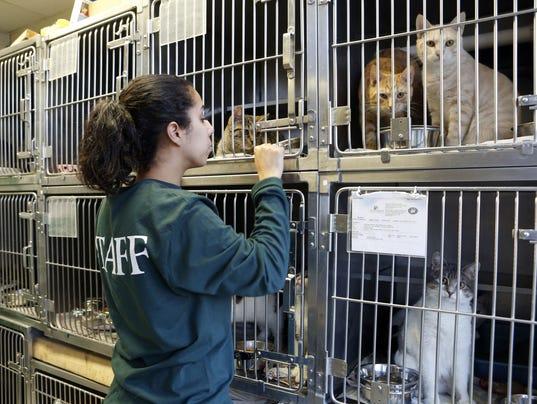 Hi Tor Animal Care Center