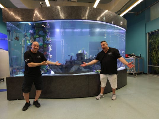 Imaginarium appears on animal planet tv show 39 tanked 39 for Connecting fish tanks
