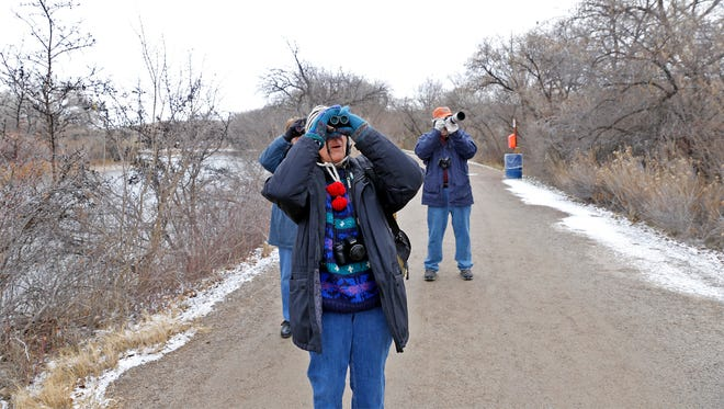 Pam Coy watches birds on Tuesday at Berg Park in Farmington.