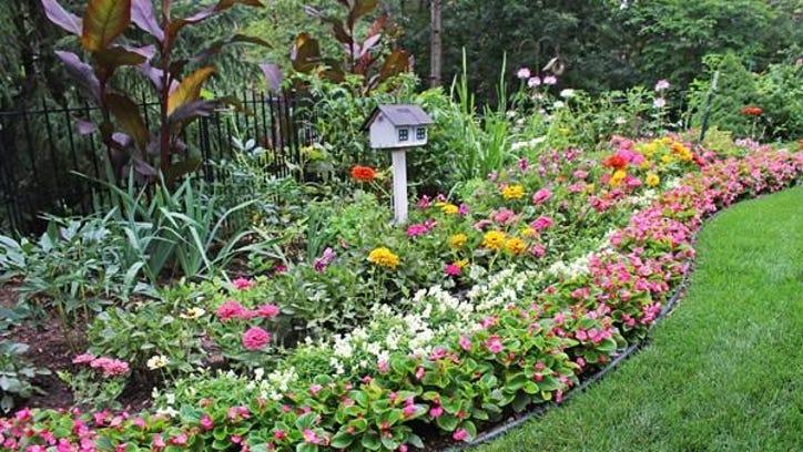 'Liz's Garden' is this week's winner
