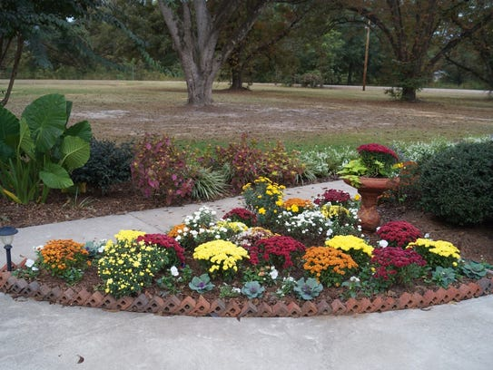 7 easy steps to create a beautiful flower bed for Beautiful flower beds