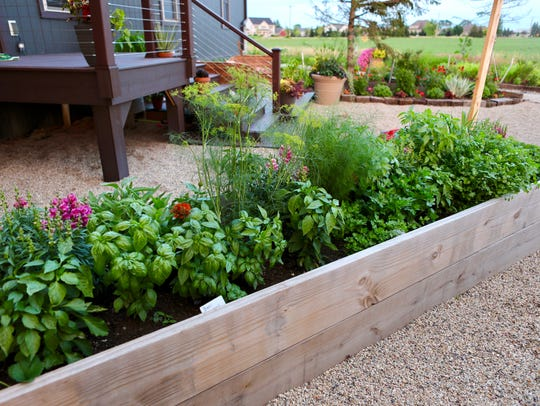 Multiple raised beds like this one are filled with