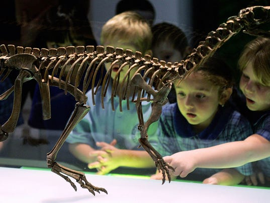 Kids looking at dinosaur fossils
