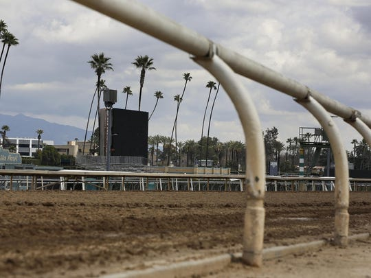 A filly broke both front legs at the end of a workout on the main dirt track at Santa Anita and was euthanized on Thursday, becoming the 22nd horse to suffer catastrophic injuries since Dec. 26.