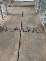 """The phrase """"#SaveKai"""" was spray painted on Antietam"""