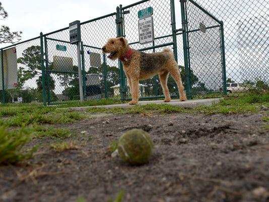 0526 SOF SEBASTIAN DOG PARK 07